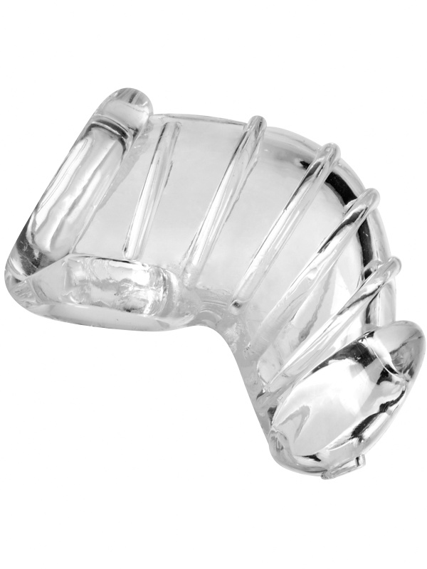 XR Master Series: Detained, Soft Body Chastity Cage
