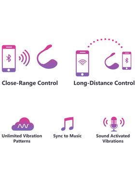 Lovense: Lush 2, Wearable Bullet Vibrator, Bluetooth Remote